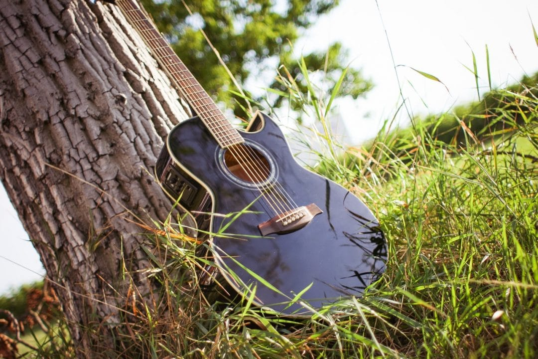 Photo of a guitar near a tree